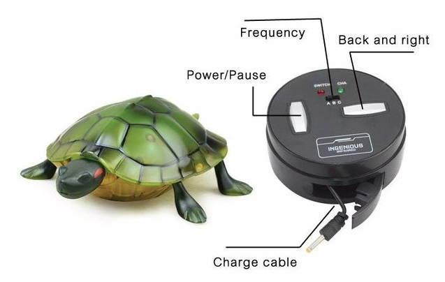 Ferngesteuerte Schildkröte Spielzeug Kinder Geschenk Süss