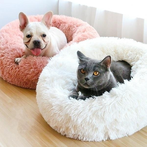 Hunde & Katzenbett