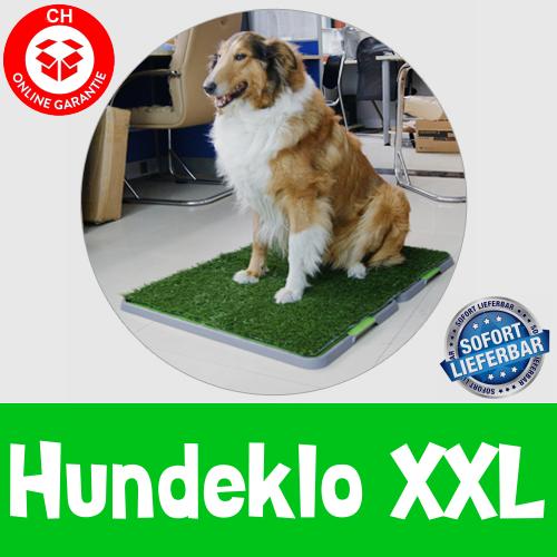 Hunde Welpen Klo WC Toilette Hundetoilette Hundeklo Welpen Hunde Klo Kunstgras Stubenrein 68x86cm XXL Grösse