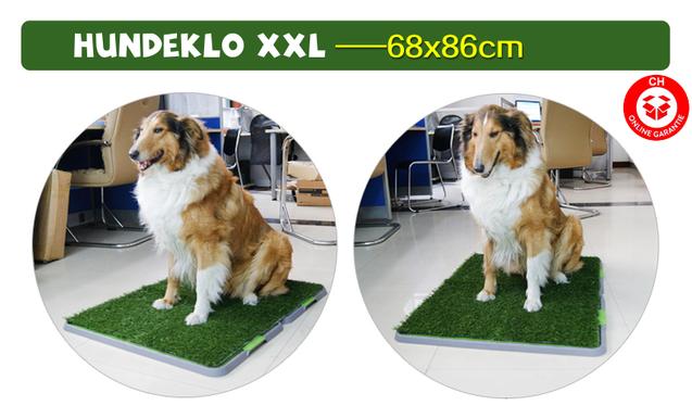 Hundetoilette Hundeklo Welpen Hunde Klo Kunstgras Stubenrein 68x86cm XXL Grösse Format Welpenhilfe Welpe Hunde WC Toilette