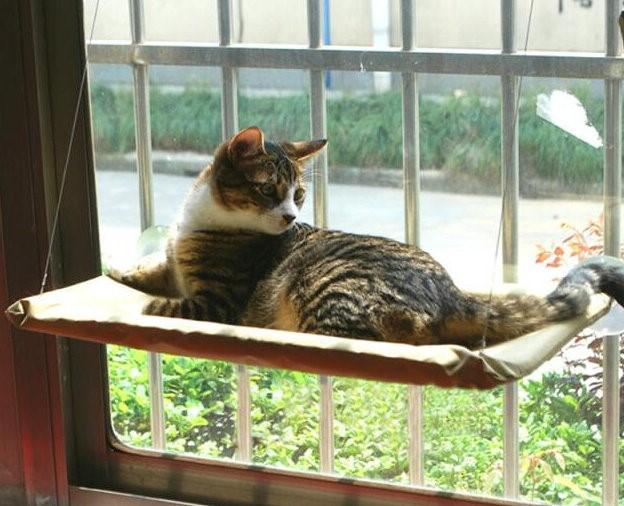 Fenster Katzenliege Fensterliege Sunny Seat Katze Bett Liege TV Hit NEU