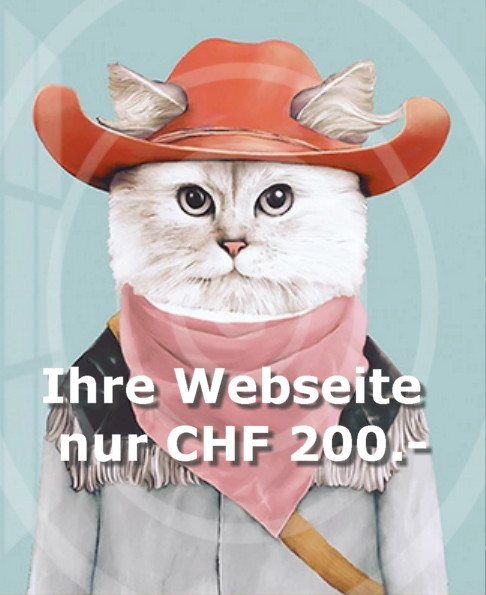 Keine Zeit für Ihre Webseiten zu erstellen?