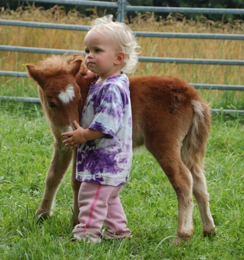 Mutter/Kind Erlebnis auf dem Pony Hof für Kinder ab 3 Jahren