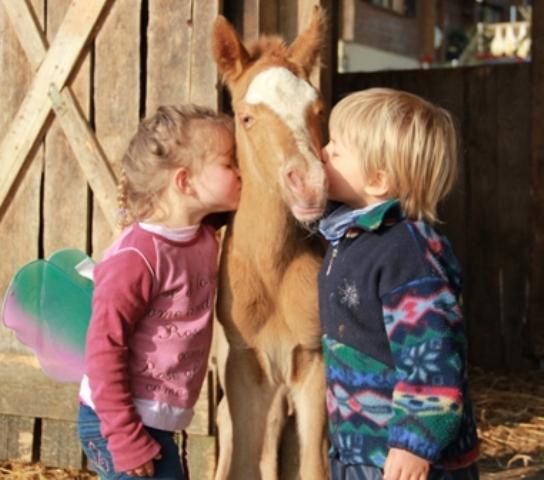 Mutter/Kind Nachmittag auf dem Pony Hof für Kinder ab 3 Jahren