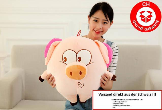 Plüschtier Schwein rosa Ferkel Schweinchen Geschenk Kinder