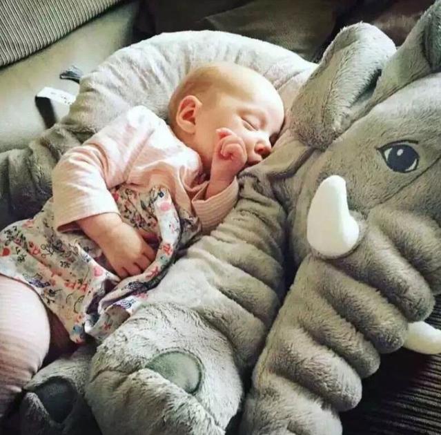 Riesen Plüschtier Elefant XXL Kuscheltier Kissen Elefanten Elefantenkissen Baby Kind Kinder Kinderzimmer Geschenk Mutter 80cm