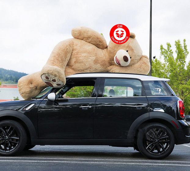 Teddy Bär Plüschbär Ted Plüschtier Plüsch Geschenk XXL Grössen 160cm 200cm 260cm Geschenk Kind Frau Freundin