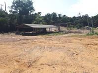 Brasilien 294 Ha Bauernhaus Tiefpreis-Grundstück bei Presidente Figueiredo AM
