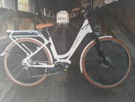 E-Bike Schnellfuss1871 Old Lady