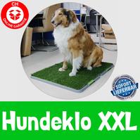 Hunde Hunde Klo WC XXL Grösse Hundeklo Welpentoilette Stubenrein Haustiere Hundetoilette WC Toilette 3 Schichten Rasen Gasi Zuhause