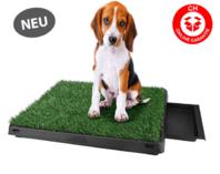 Hunde Klo WC Toilette Hundeklo Hundewc Welpen Klo Welpentoilette Trainingsgerät USA HIT Stubenrein mit Behälter