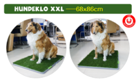 Hundetoilette Hundeklo Welpen Hunde Klo Kunstgras Stubenrein 68x86cm XXL Grösse Grose Hunderassen Welpen