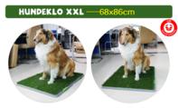 Hundetoilette Hundeklo Welpen Hunde Klo Kunstgras Stubenrein 68x86cm XXL Grösse Format Welpenhilfe Welpe Hunde WC Toilette Schweiz Kauf