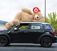 Riesen Teddy Teddybär Plüschbär XXL ca. 2.6m 260cm XXXL Plüschtier Geschenk Kind Freundin Frau Abholbereit Neu