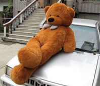 Riesen XXL Teddybär Teddy Bär Plüsch braun 230cm Plüsch Kuschelbär Geschenk Kinder Frauen Neuware / Neu