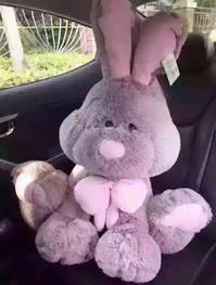 Süsser Riesen Plüsch Hase Plüschhase Bunny Kanichen 120cm Geschenk XXL Kinder Frauen Valentinstag